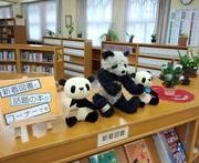 図書館パンダ(ブログ).jpg